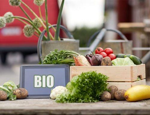 Jaké BIO potraviny se vyplatí nakupovat a kde?