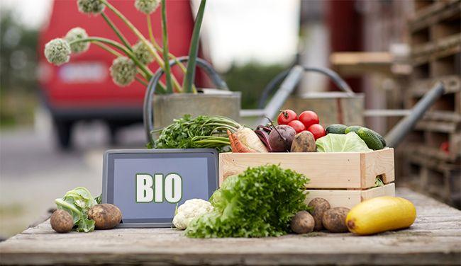 Jaké BIO potraviny se vyplatí nakupovat?