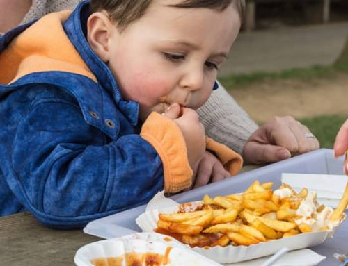 Dětská obezita a její příčiny aneb, kdo za to může + Inspirace jídelníčku